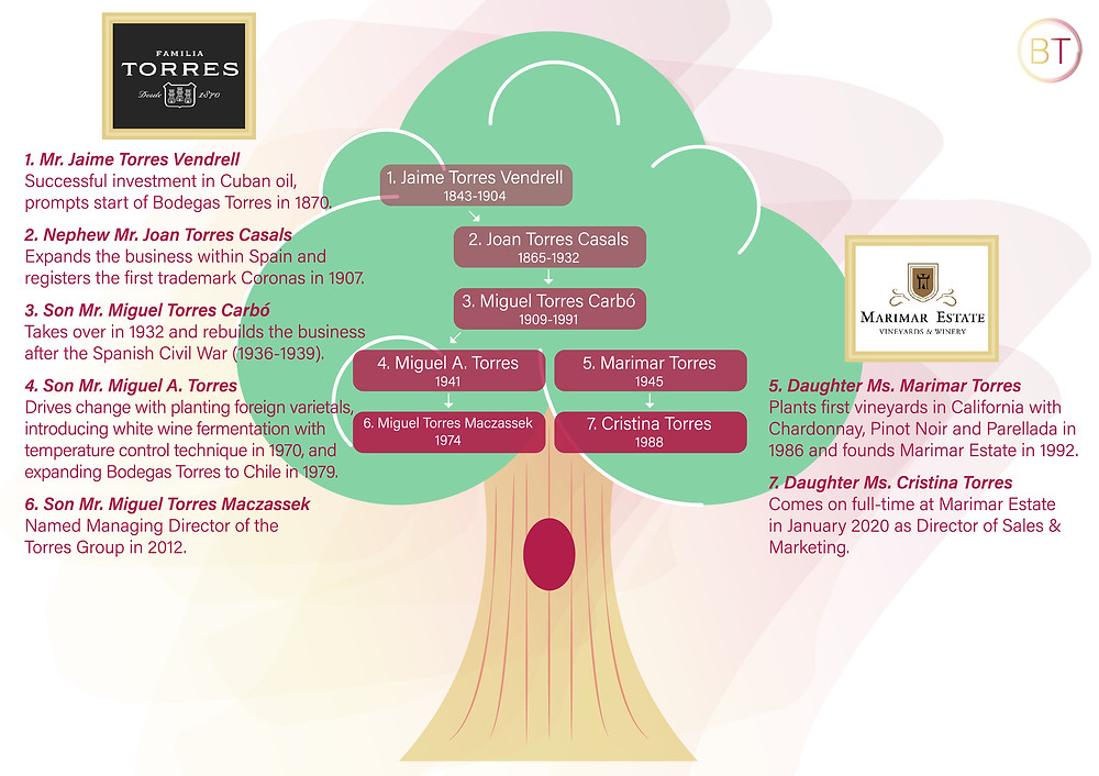Familia Torres wine family business tree by Blonde Tasting