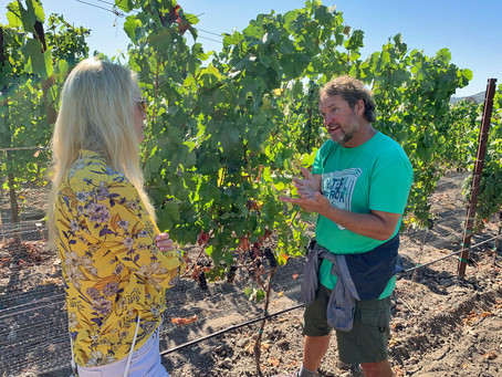 Chad Melville, A Winegrower Blending the Old and New World