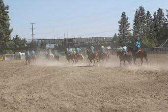 Horse dust.JPG