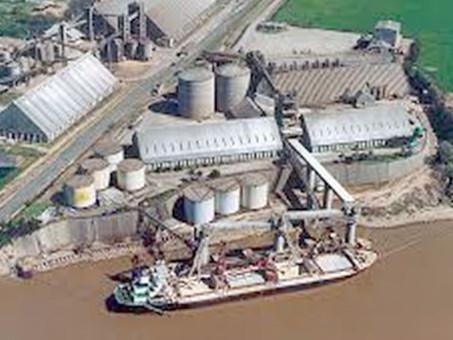 Proceso de expansión: Grupo Olio comienza a operar en planta de Vicentín.