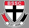 2021 Saints Logo - grey.png