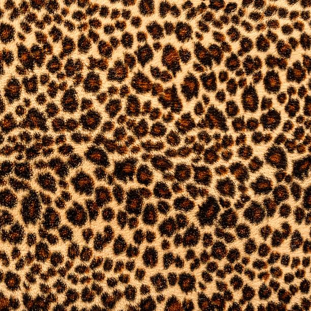 samuelgarzabernstein - Brand Palette (1).png