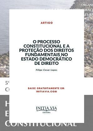 O processo constitucional e a proteção dos direitos fundamentais