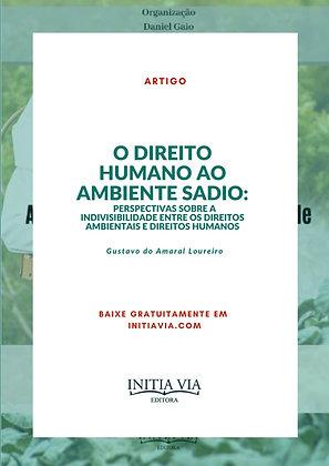 O direito humano ao ambiente sadio: perspectivas sobre a indivisibilidade