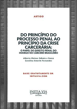 Do Princípio do Processo Penal ao Princípio da crise carcerária