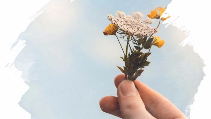 mão segurando um raminho de flores