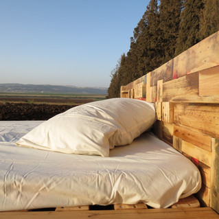 מיטה shaycle (31).JPG