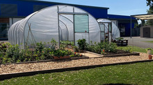 Wallace Hall Polytunnel Project