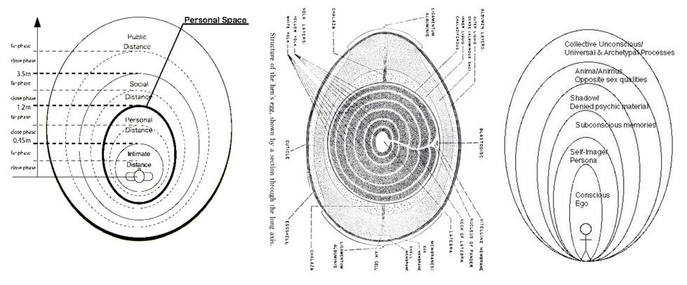 E.T. Hall's proxemics diagram-egg diagram-Jung's person diagram