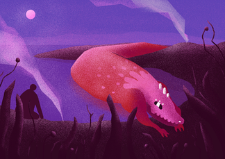 Red crocodile