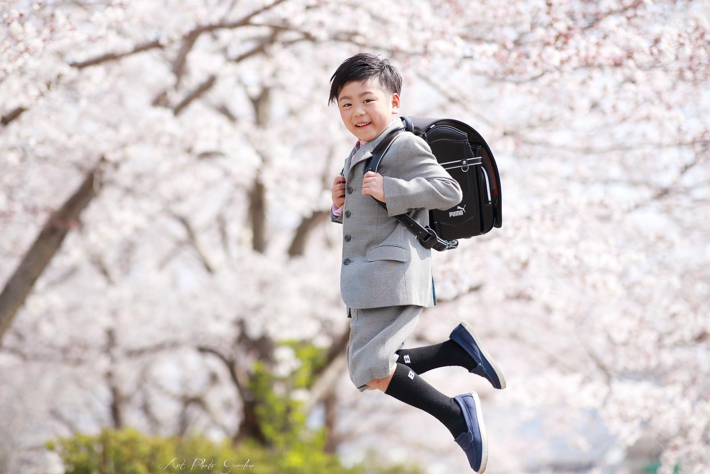 桜ロケ兵庫姫路太子たつの