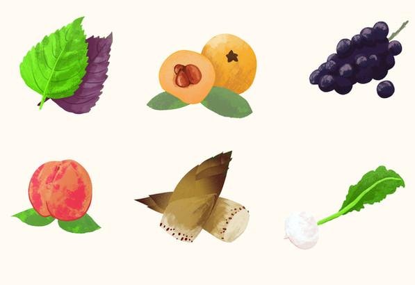 ANA - Taste the seasons