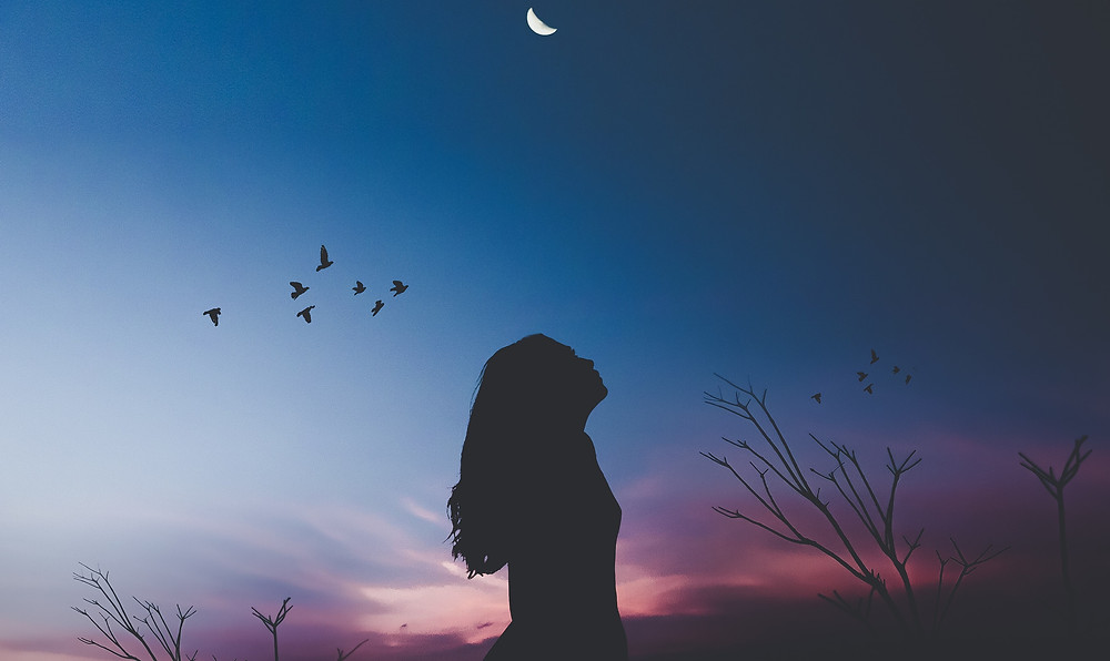 A dusky sky of blues and purples broken only by a cresent moon and the dark silhouette of a slim girl as she gazes up into the sky.