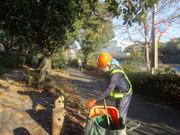 【報告】東京都 港湾局による道路・緑地清掃