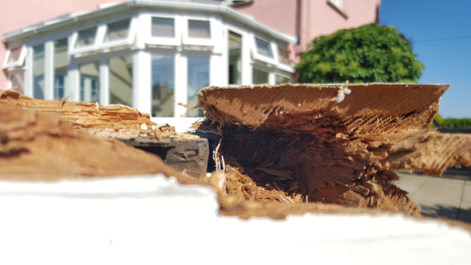 Rotten timber repair Somerset