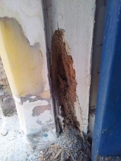 Rotten timber repair Somerset 3