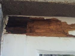 Rotten timber repair Weston 2