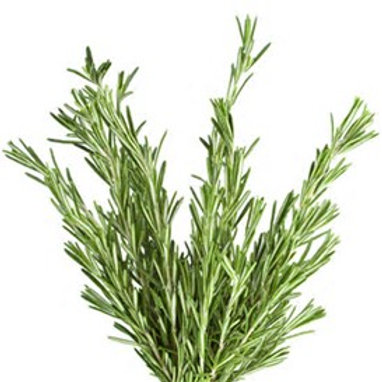Infused Olive Oil-Rosemary