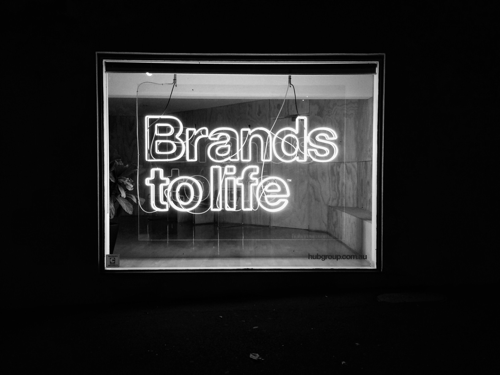 Branding/Marketing Consults or Trainings