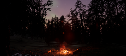ForestFire2.png