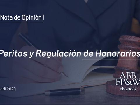 El absurdo sistema de regulación y pago de los honorarios de los peritos en los procesos civiles y c