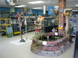 2009 Interior72