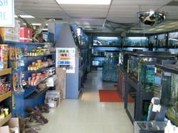2009 Interior33