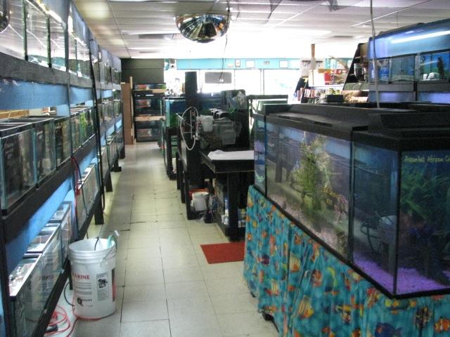 2009 Interior26