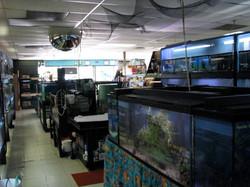 2009 Interior27