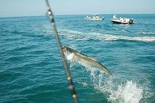 Boca-Grande-Tarpon-Fishing-.jpg