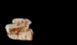 QUINOA%2520FP2_edited_edited_edited_edit