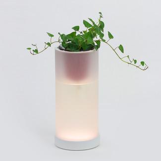 OLED Pot Mood Lamp