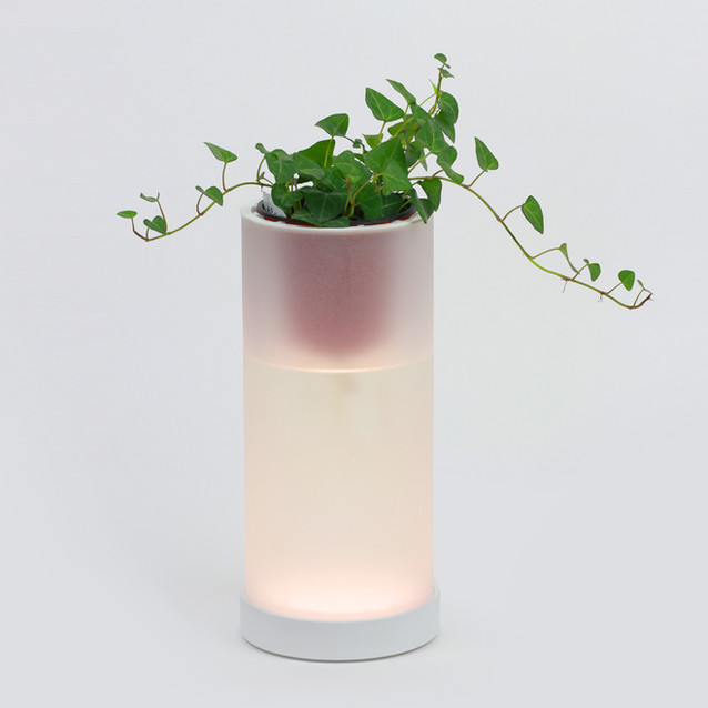 OLED Pot Mood Lamp