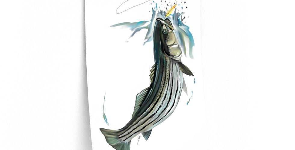 Premium Matte Poster - Artist Series (Stripedbass)