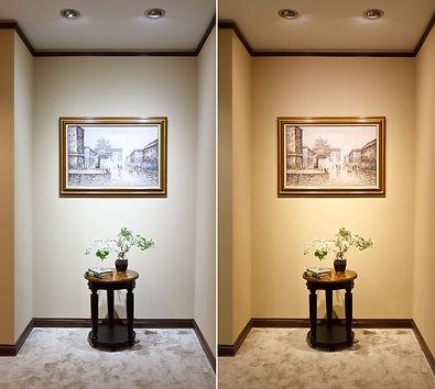 led-household-bulb-par20-x5x1-35-DR.jpg