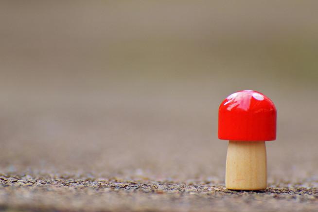 5 Tipps gegen die Einsamkeit