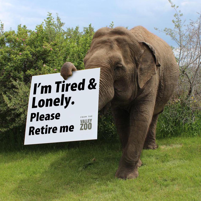 Retire Me