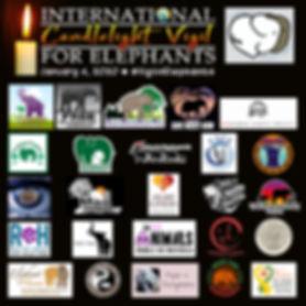 Participants3.jpg