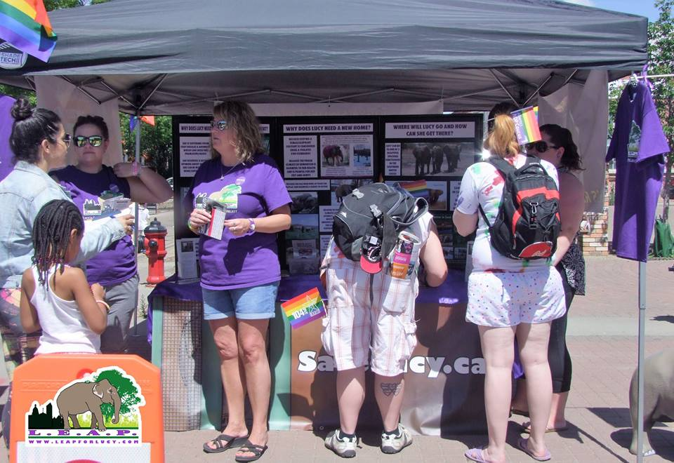 Our table at the Pride Parade