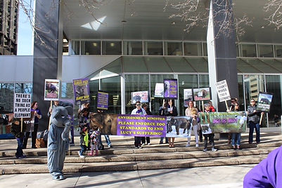 Demonstration at Shannon Phillips office LEAP