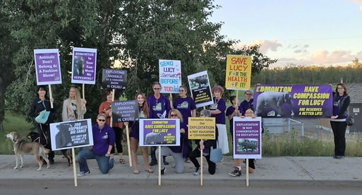 Zoo Protest LEAP