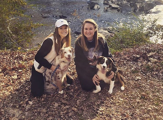 owner of lola & company - pet care taking dogs on a hike
