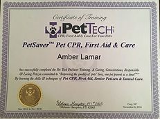 lola & company's certificate for pet CPR and first aid