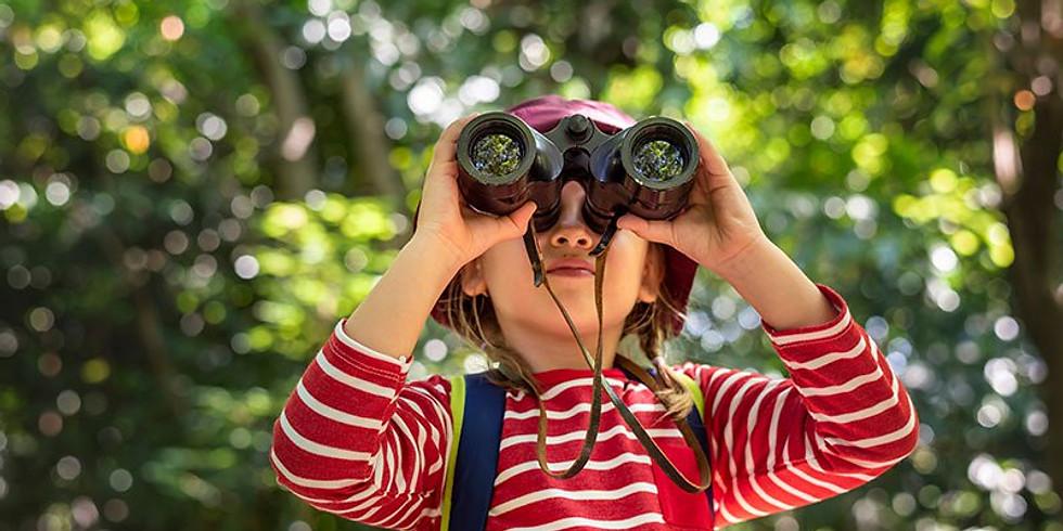 Beginning Birding for Kids