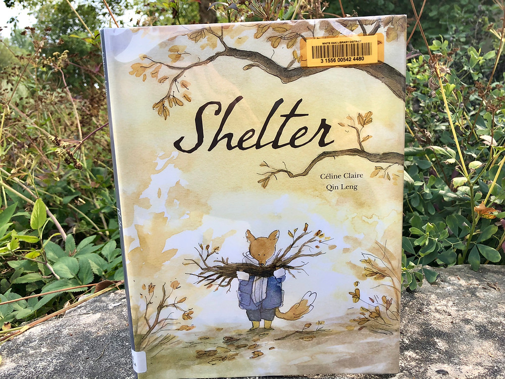 shelter book