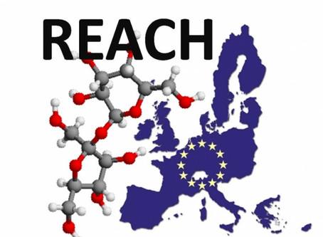 Reach : 11 nouvelles substances soumises à autorisation