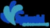 Splash _ Boomerang logo.png