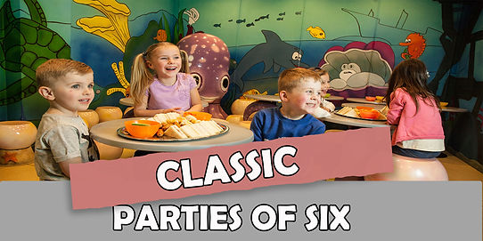 classic party of 6.jpg