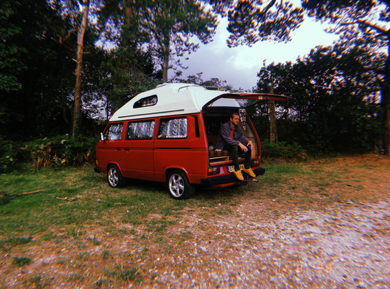 2019-08-11 New Forest