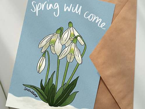 'Spring will come' - 5-pack wildflower seed gift set